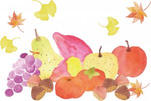 秋の味覚「さつま芋」